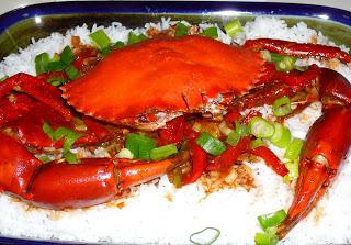 Chilli Mud Crab