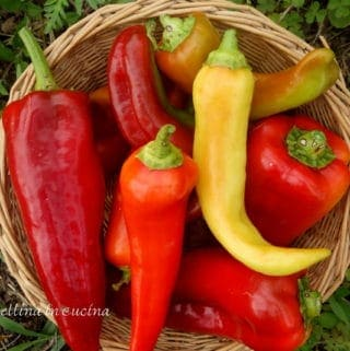 long red and yellow peppers in a basket