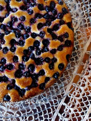 Lime and Blueberry Syrup Cake