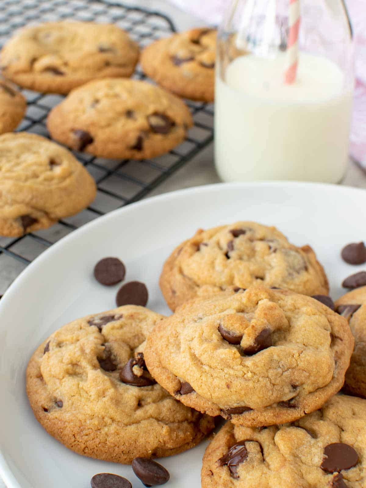 chocolate chip cookies on a white plate with bottle of milk in the background and more cookies on wire rack.